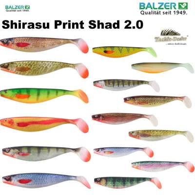 Dorsch Balzer Ostsee Naturköder System mit Fluo Seitenarm Plattfisch