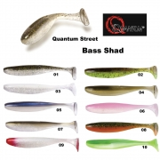 Quantum Street Bass Shad 2,4 / 10 Stück 09 red head